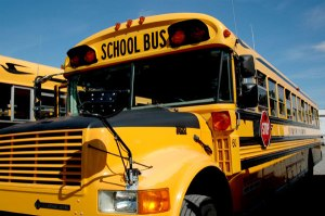 My Lifetime Battle with the Big, Yellow School Bus